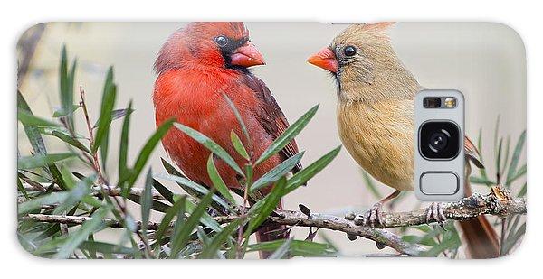 Cardinal Mates Galaxy Case