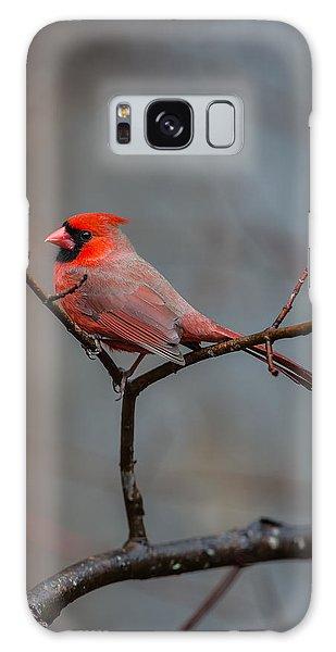 Cardinal Sing Galaxy Case