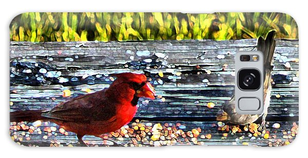 Cardinal Wren Galaxy Case