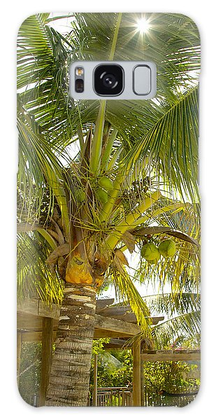 Caribbean Parasol Galaxy Case