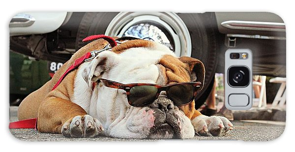 Carmel Cool Dog Galaxy Case