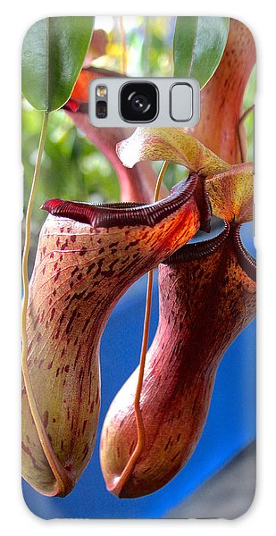 Carnivorous Pitcher Plants Galaxy Case