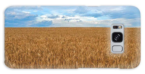 Carolina Wheat Field Galaxy Case by Marion Johnson
