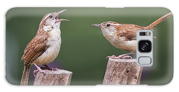 Carolina Wren Serenade Galaxy Case