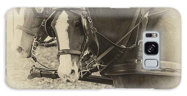 Carriage Horses II Galaxy Case by Terry Rowe