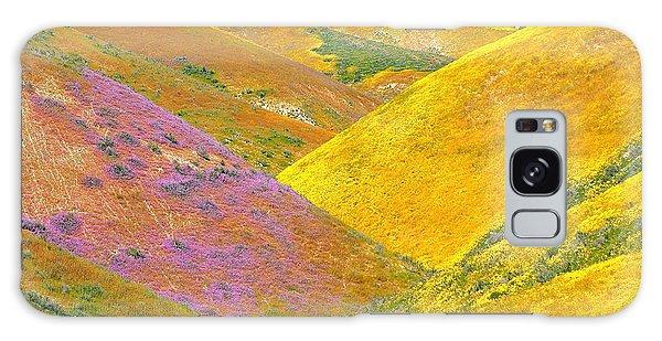 Carrizo Wildflowers Galaxy Case