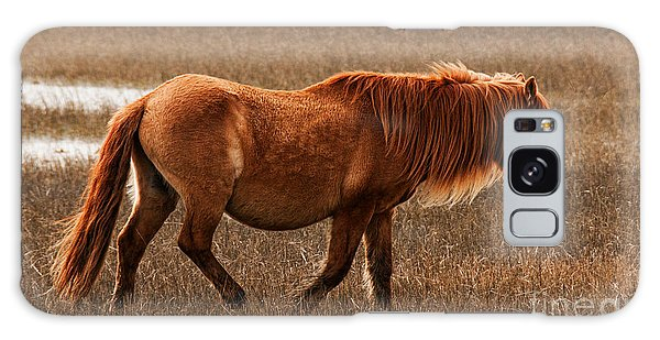Carrot Island Pony Galaxy Case by Sharon Seaward