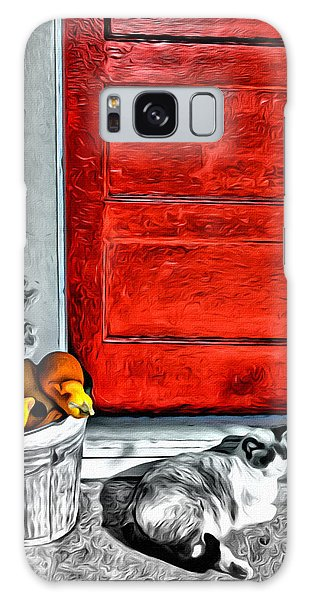 Cat By The Red Door Galaxy Case
