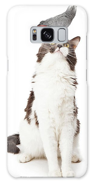 Cat Looking Up At A Bird Galaxy Case