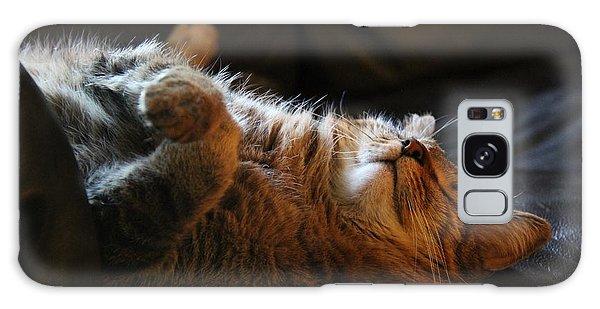 Cat Nap Galaxy Case