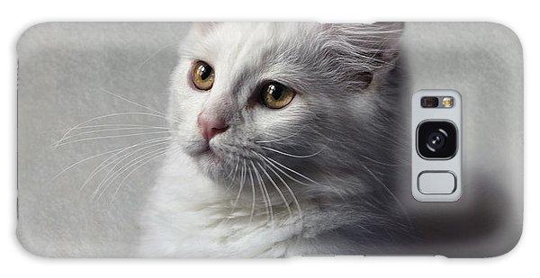 Cat On Texture - 02 Galaxy Case
