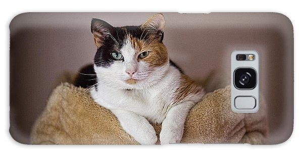 Cat Portrait Galaxy Case
