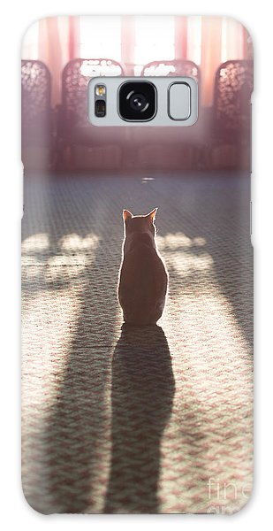 Cat Sitting Near Window Galaxy Case by Matteo Colombo