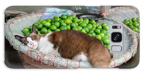 Cat Sleeping Among The Limes Galaxy Case