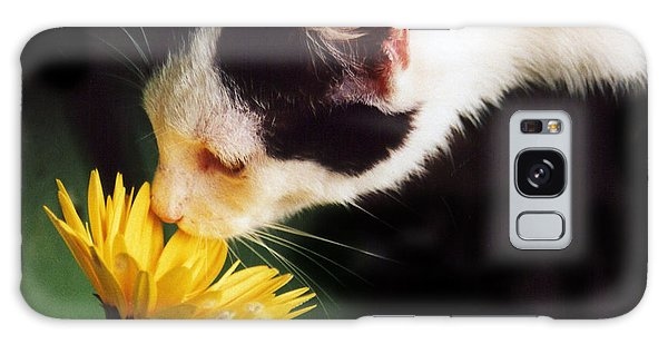 Cat Smelling Flower Galaxy Case