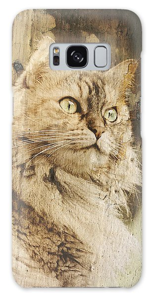 Cat Texture Portrait Galaxy Case by Raffaella Lunelli