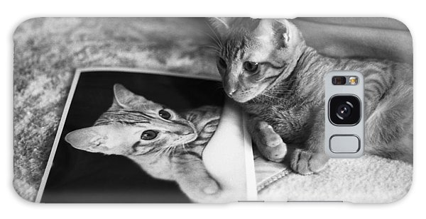 Cat Vanity Galaxy Case by Ray Congrove