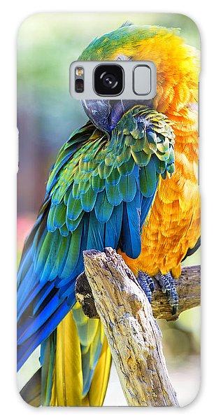Macaw Galaxy Case - Catalina Macaw by Bill Tiepelman