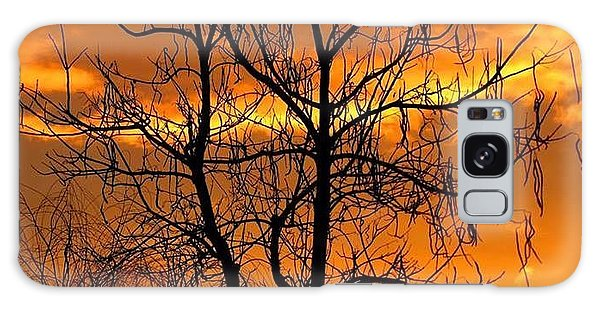 Catalpa Orange Galaxy Case by Fred  Sheridan