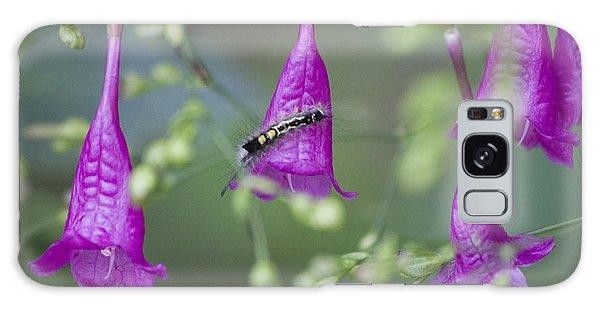 Caterpillar Playground  Galaxy Case by Nola Lee Kelsey