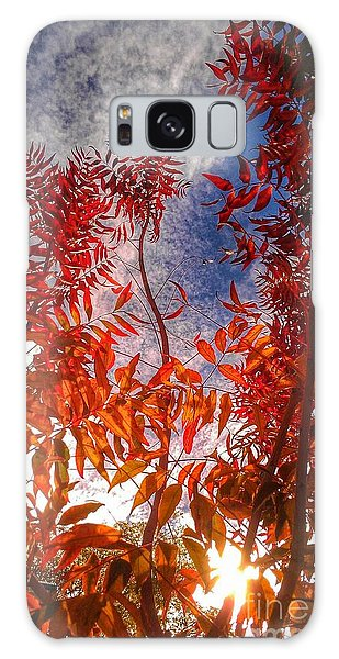 Catharsis Galaxy Case by CML Brown