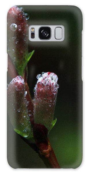 Catkin Raindrops Galaxy Case