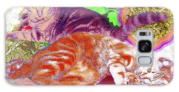 Catnip Boy Galaxy Case