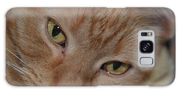 Cat's Eyes Galaxy Case by Mark McReynolds