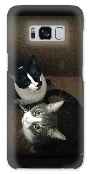 Cats In The Box Galaxy Case