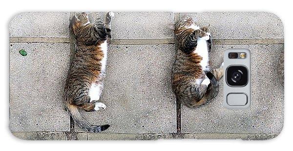 Cat's Life 3 Galaxy Case