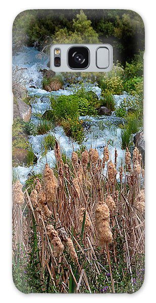 Cattails And Waterfalls Galaxy Case