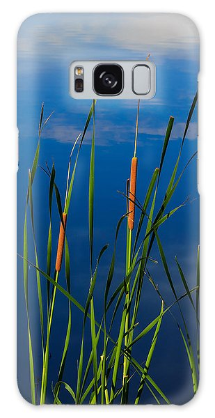 Cattails At Overholster Galaxy Case by Doug Long
