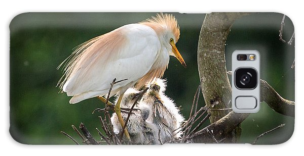 Cattle Egret Tending Her Nest Galaxy Case