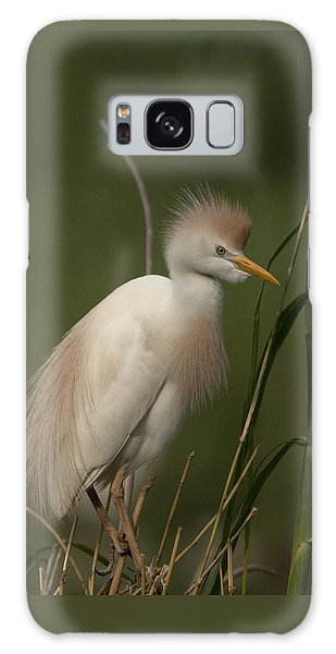 Cattle Egret Galaxy Case