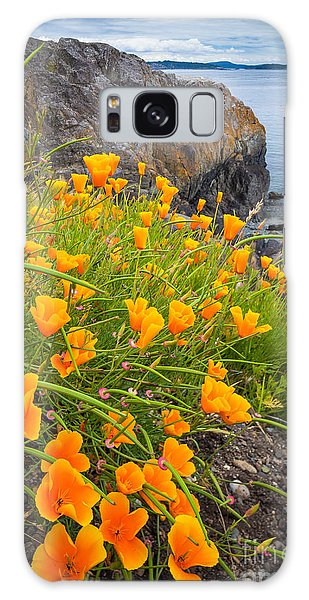 Cattle Point Poppies Galaxy Case