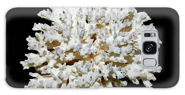 Cauliflower Coral (pocillopora Sp.) Galaxy Case