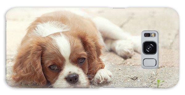 Cavalier Puppy Galaxy Case