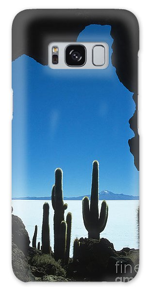 Cave And Cacti Incahuasi Island Galaxy Case