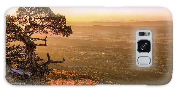 Cedar Tree Atop Mt. Magazine - Arkansas - Autumn Galaxy Case