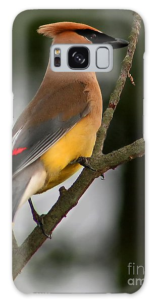 Cedar Wax Wing II Galaxy Case
