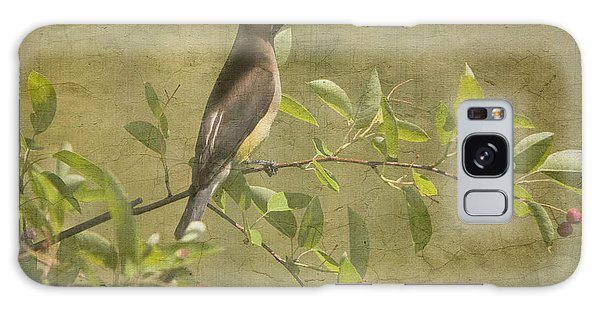 Cedar Waxwing Berry Pickin  Galaxy Case by Betty  Pauwels