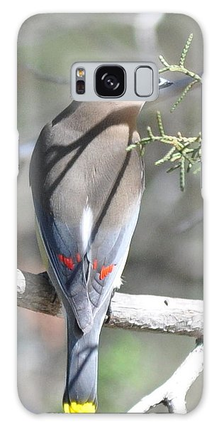 Cedar Waxwing Galaxy Case