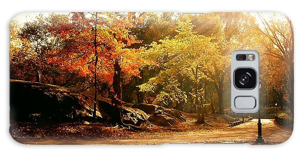 New Leaf Galaxy Case - Central Park Autumn Trees In Sunlight by Vivienne Gucwa