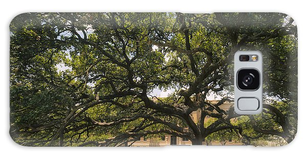 Galaxy Case featuring the photograph Century Tree by Joan Carroll