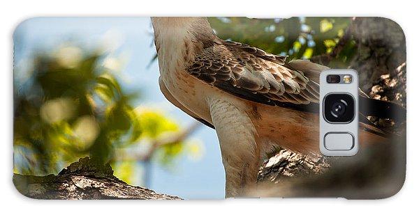 Ceylon Hawk Eagle Galaxy Case