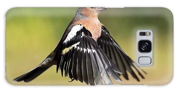 Chaffinch In Flight Galaxy Case