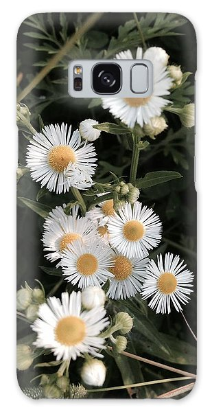 Chamomile Flowers. Galaxy Case