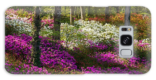 Charleston Sc Azalea Flowers And Sunlight - Fairytale Forest Galaxy Case