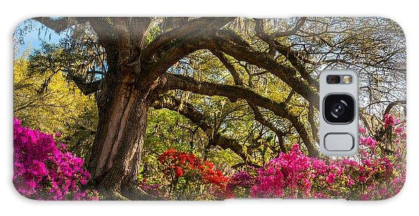 Charleston Sc Magnolia Plantation - Southern Hospitality Galaxy Case