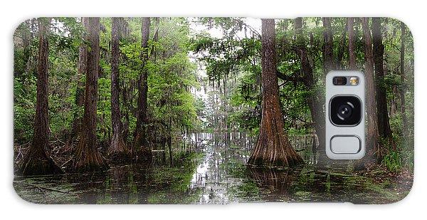 Charleston Swamp Galaxy Case by John Johnson